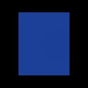 ROI Icon Blue